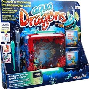 ενυδρεια, κατοικιδια ζωα, κατοικιδια, ψαρια, ψαρια ενυδρειου, ψαρια ενυδρειου γλυκου νερου, ψάρια ενυδρείου, enidrio, ενυδρεια σκρουτζ, ψαρια για ενυδρειο, enidria, enydreio, αξεσουαρ ενυδρειου, ενυδρεια ψαρια, Ενυδρείο Aqua Dragons, aqua dragons, παιχνιδια, πεχνιδια, παιχνιδια με ψαρεμα, παιχνιδια με ζωα, παιχνιδια με ψαρια, ειδη ψαριων, ζωακια, παιχνιδια για κοριτσια, παιχνιδια για αγορια, paixnidia gia agoria, παιχνίδια γνώσεων, νεα παιχνιδια, παιχ, τα καλυτερα παιχνιδια, εκπαιδευτικα παιχνιδια, παιδικα παιχνιδια, παιχνιδια για παιδια, ολα τα παιχνιδια, διαφορα παιχνιδια, παιχνίδια για κορίτσια, κοριτσιστικα παιχνιδια, paxnidia, pexnidia gia agoria, aqua dragons, παιχνιδια με δρακουσ, δρακοι, δρακοι παιχνιδια
