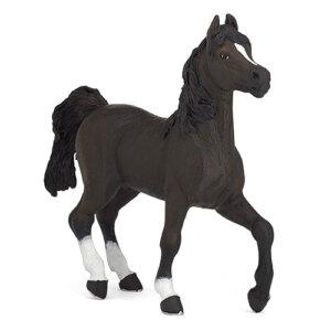 Papo Φιγούρα Αραβικό Άλογο, papo figures, παπο, figura, figures shop, φιγουρα, φιγούρα, φιγούρες, φιγουρες, Μινιατούρες Papo, papo greece, papo toys greece, μινιατούρες, φιγούρες δράσης, φιγουρες papo, μινιατουρες ζωων, φιγουρες ζωων, μινιατουρες κουκλοσπιτου, μινιατουρες galactic adventures, papo 51505