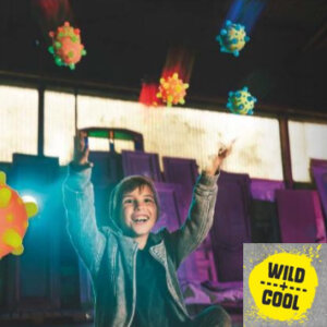 Wild + Cool