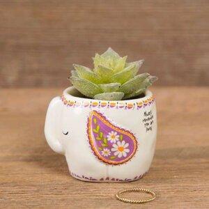 Natural Life Γλαστράκι μίνι με φυτό Ελεφαντάκι, διακοσμηση σπιτιου, διακοσμηση σαλονιου, διακοσμηση, φωτιστικα, διακοσμητικα σπιτιου, διακοσμητικα, ειδη σπιτιου, οικια και διακοσμηση, διακοσμητικα σαλονιου, διακοσμηση τοιχου, γυαλινα βαζα, διακοσμητικα τοιχου, βαζακια γυαλινα, διακοσμηση κρεβατοκαμαρασ, διακοσμηση παιδικου δωματιου, διακοσμηση τζακιου, διακοσμηση δωματιου, κηροπηγια, διακοσμηση εσωτερικου χωρου, επιπλα σπιτιου, epipla, διακοσμηση μπαλκονιου, πασχαλινη διακοσμηση, διακοσμηση υπνοδωματιου, δωρα γαμου, διακοσμηση κηπου, διακοσμηση μπανιου, natural life, natural life greece, graffiti, graffiti 51394