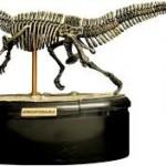 3D puzzle δινοσαυρος, δινοσαυρος 3D Puzzle, puzzle 3D δινοσαυρος,