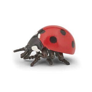Papo Φιγούρα 'Ladybird' 50257