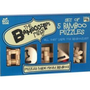 Professor Puzzle - set of 5 Bamboo Puzzles - P2028